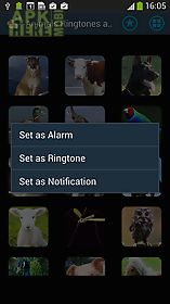animals sounds ringtones alarm