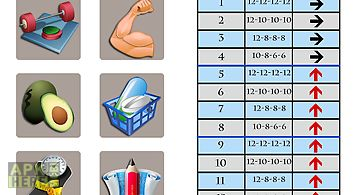 Dumbbell muscle workout plan t