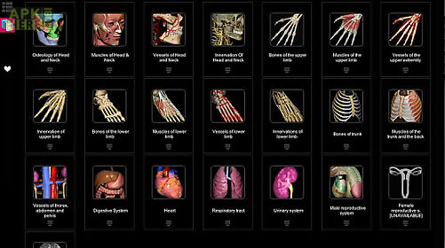 Anatomy learning - 3d atlas for Android free download at Apk Here ...