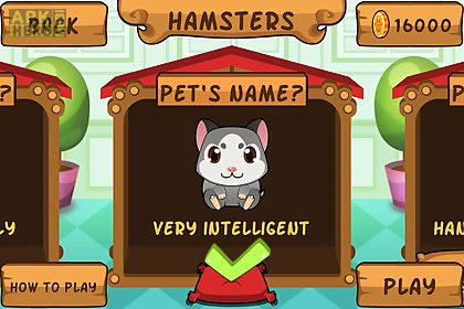 my virtual hamster - cute pet