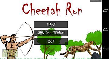 Animal run - cheetah