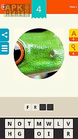 zoom! ~ magnified pics quiz