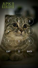 secret notes 2 diary password