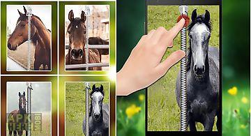 Horse zipper lock