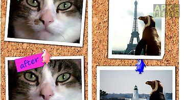 Photo hacker copy paste editor