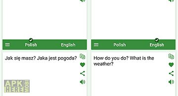 Polish - english translator