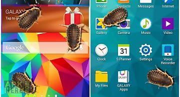 Bug in phone funny joke