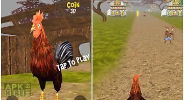 Animal run - rooster