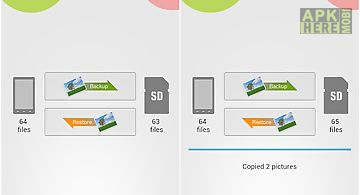 Quick picture backup to sdcard