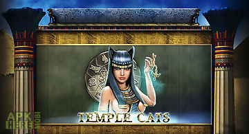 Temple cats: slot