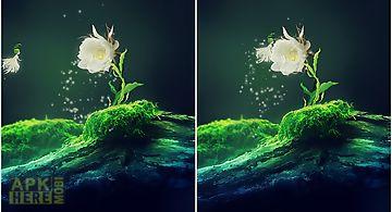 Cactus flower Live Wallpaper