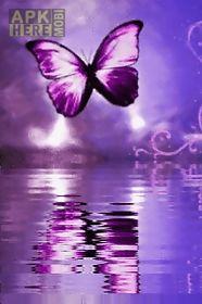 purple butterfly reflected in