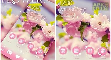 Miss flower go launcher theme