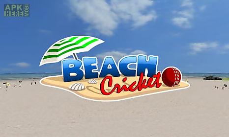 beach cricket