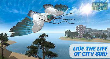 Flying bird pigeon simulator