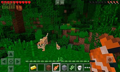 minecraft pocket edition 1.2.10.2 apk here