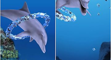 Dolphin ring trial