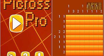 Picross pro