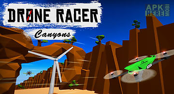 Drone racer: canyons