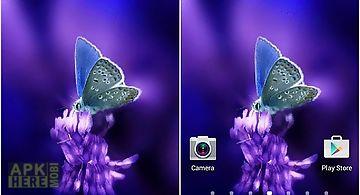 Cute butterfly by daksh apps Liv..