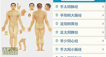 Human acupuncture points chart