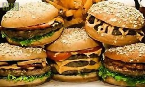 Burger recipes for android free download at apk here store apkhere burger recipes app for android description international fast food restaurant chicken burger veg burger cheese burger and different varities burger recipes forumfinder Image collections