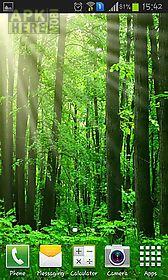 forest landscape live wallpaper
