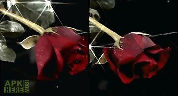 Rose falling  Live Wallpaper